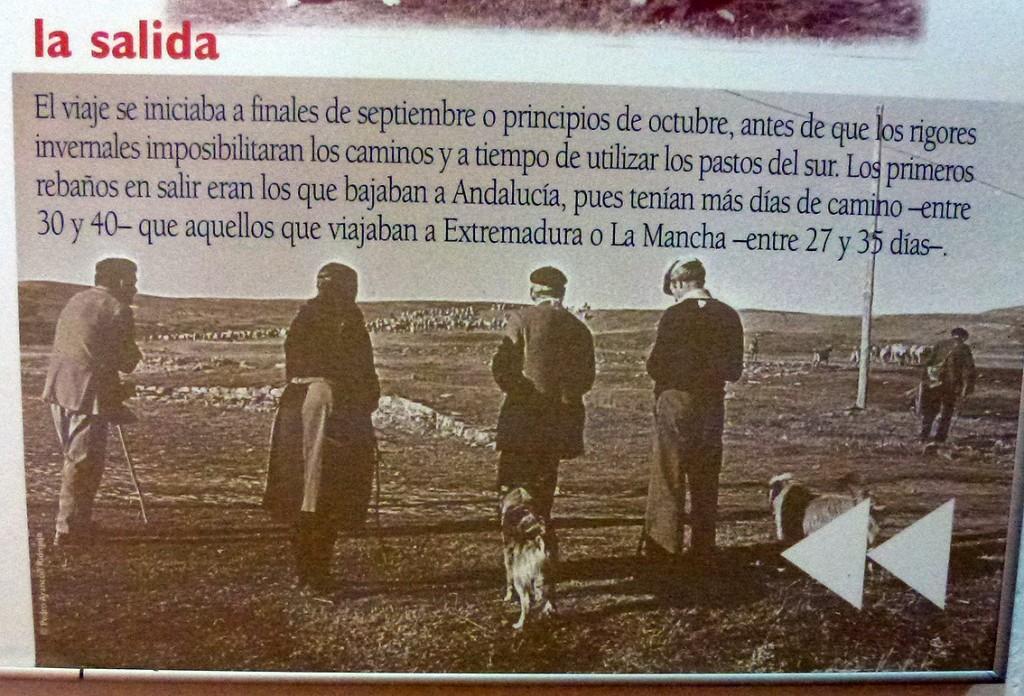 Jornadas del viaje trashumante (Museo Pastoril de Oncala)