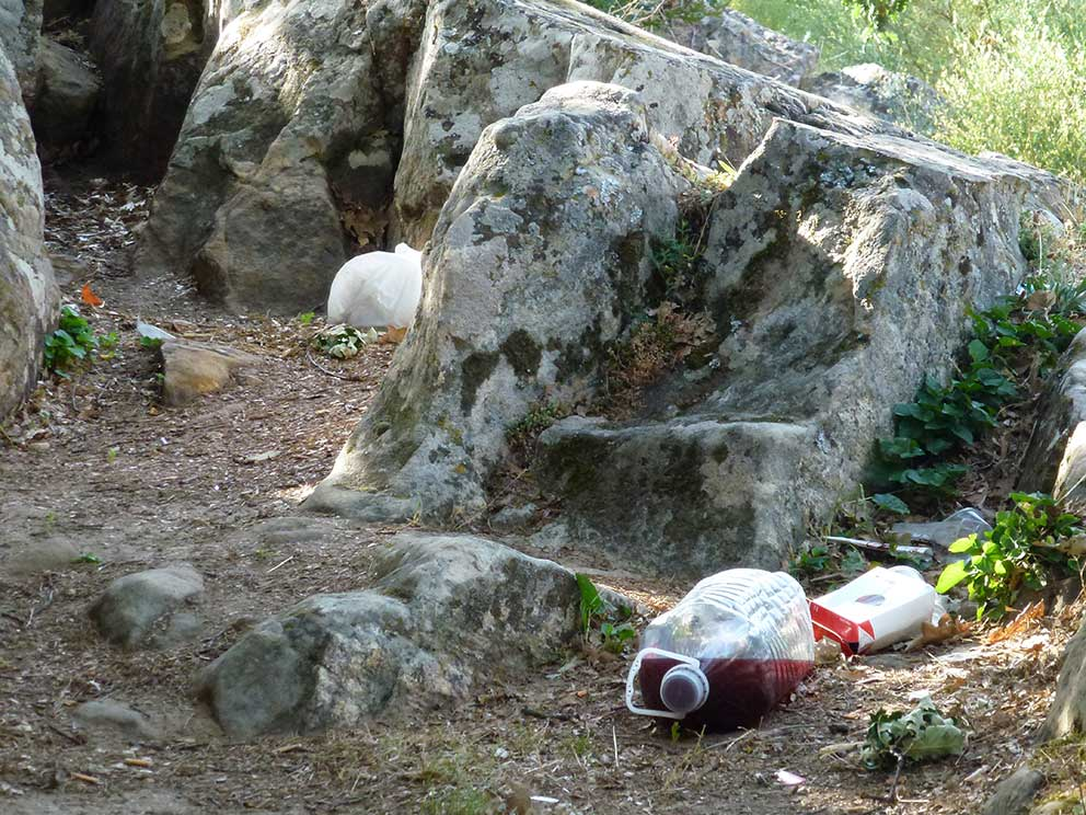 Volutnariado-recogida-basura-en-Valonsadero-2015-h