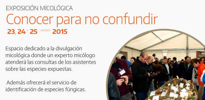 Exposicion micologica en Mercasetas Soria 2015
