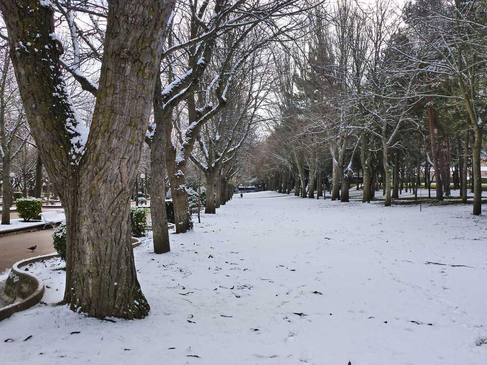 paseo verde nevado en Dehesa de Soria
