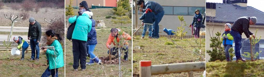 Plantando-arboles-Ambientalia-Bosque-Infantil-de-Soria-2