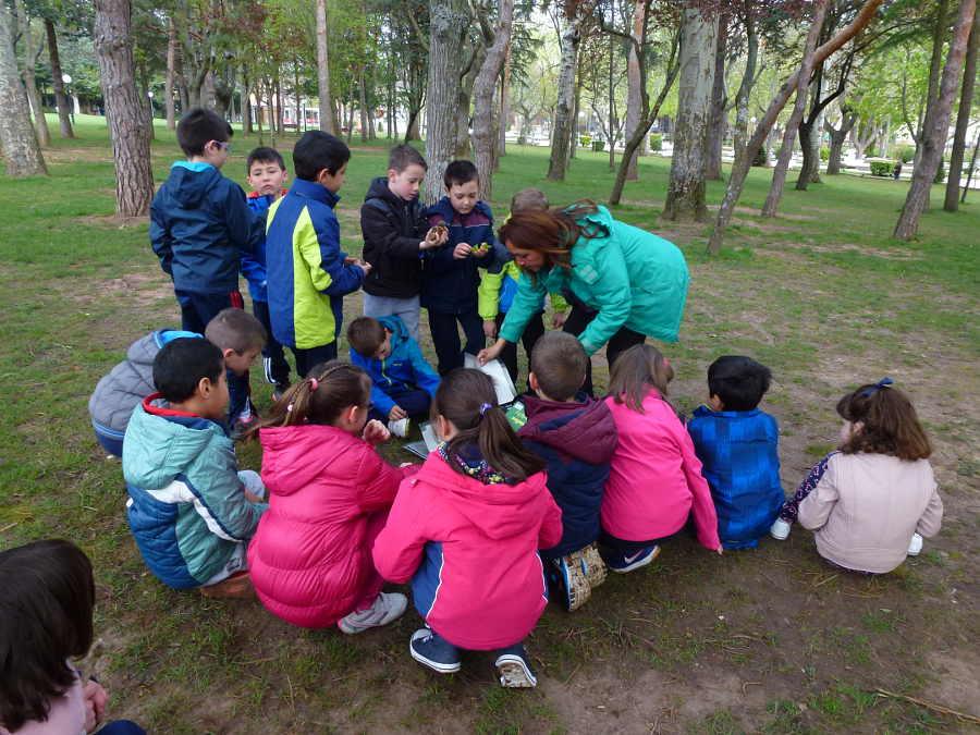Ambientalia en bosque Dehesa de Soria abril 2016