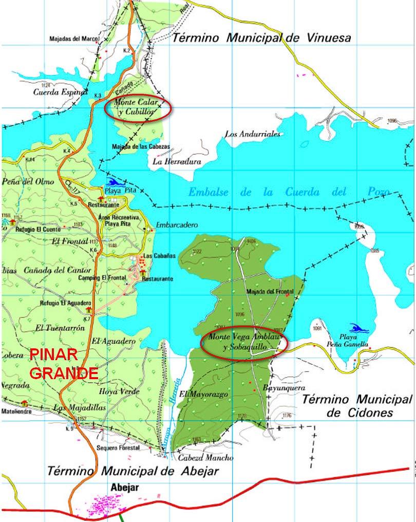 Montes-anexos-a-Pinar-Grande-de-Soria