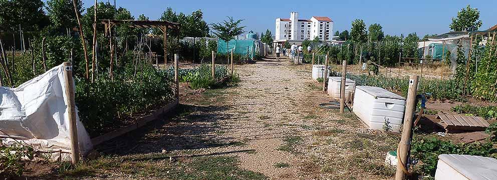 Panoramica-huertos-municipales-de-Soria