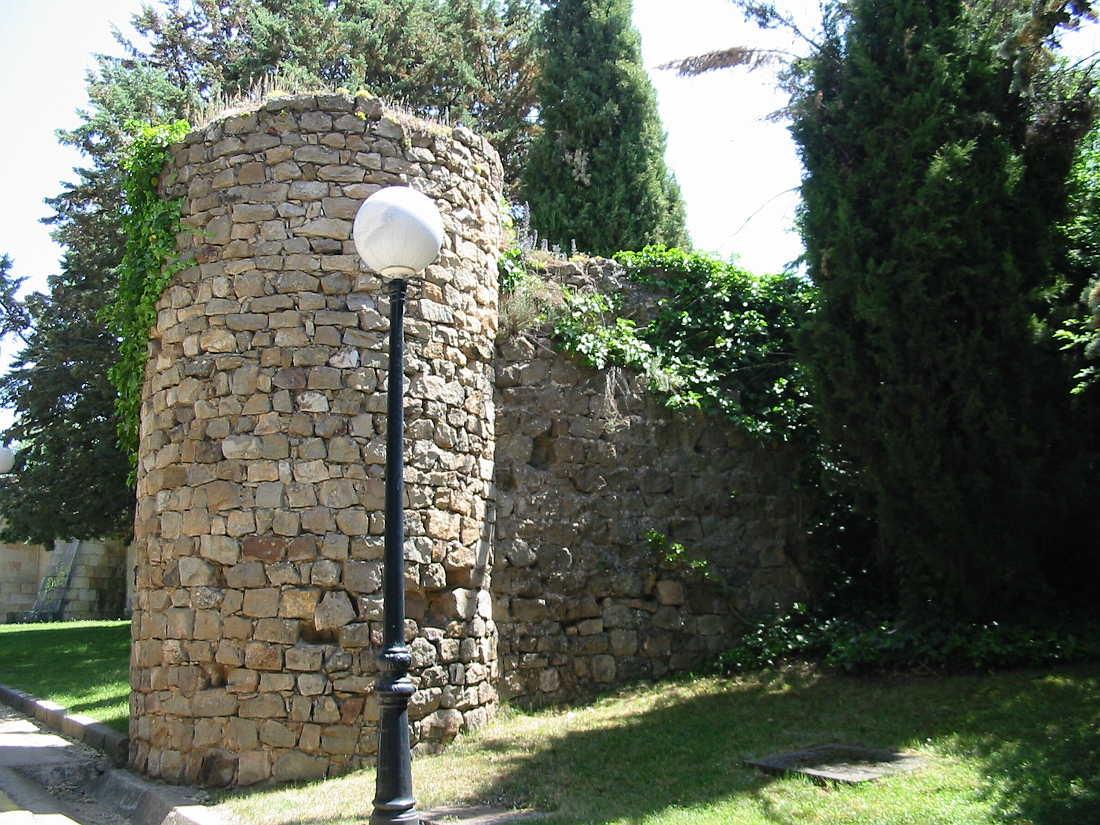 hiedra-en-torre-muralla-castillo-de-soria