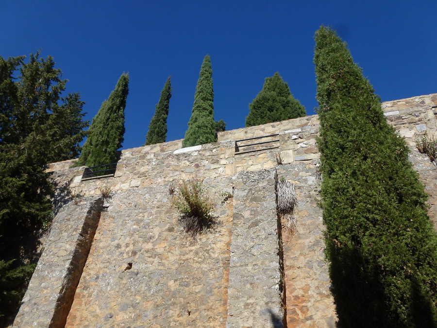 cipreses-y-alto-muro-del-cementerio-de-soria